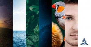 Orígenes web - Sitio de Creacionismo
