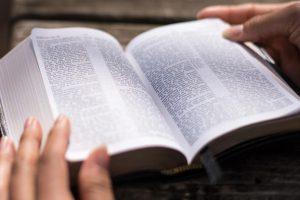 lecturas antifonales