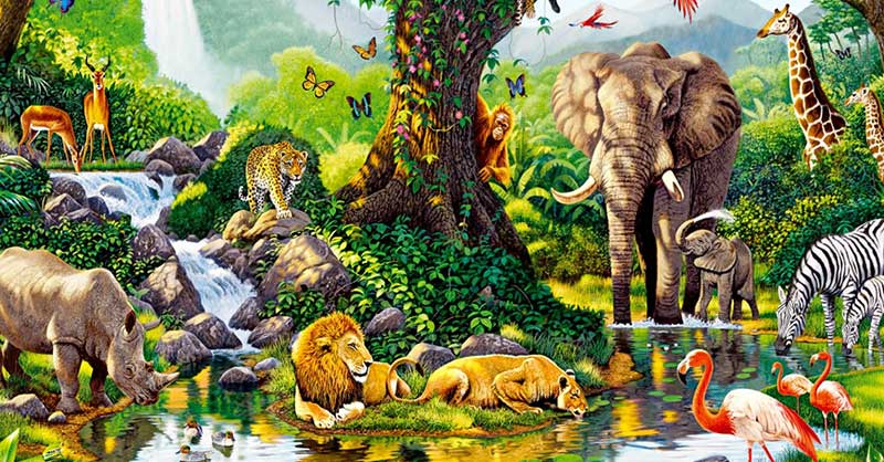 Ecología, biodiversidad y creación: un enfoque estructural